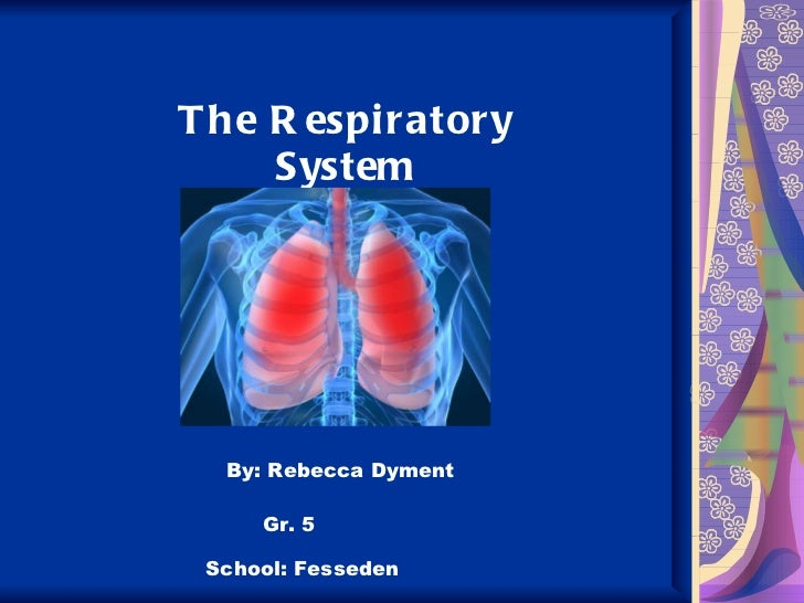 The Respiratory System By: Rebecca Dyment Gr. 5 School: Fesseden