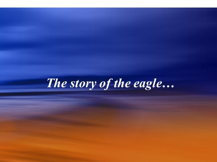 Rebirth of the Eagle - Story of Eagle Photo Presentation