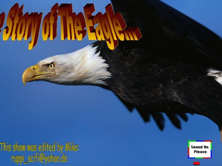 The Story of The Eagle… This show was edited by Mike: [email_address]