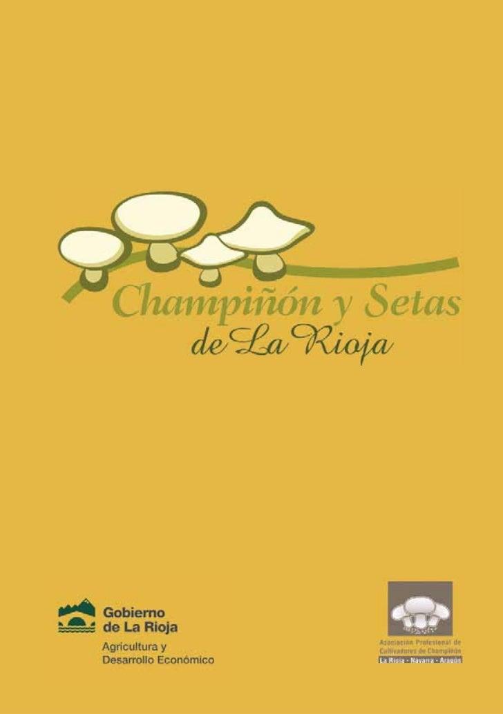 Recetario champinon