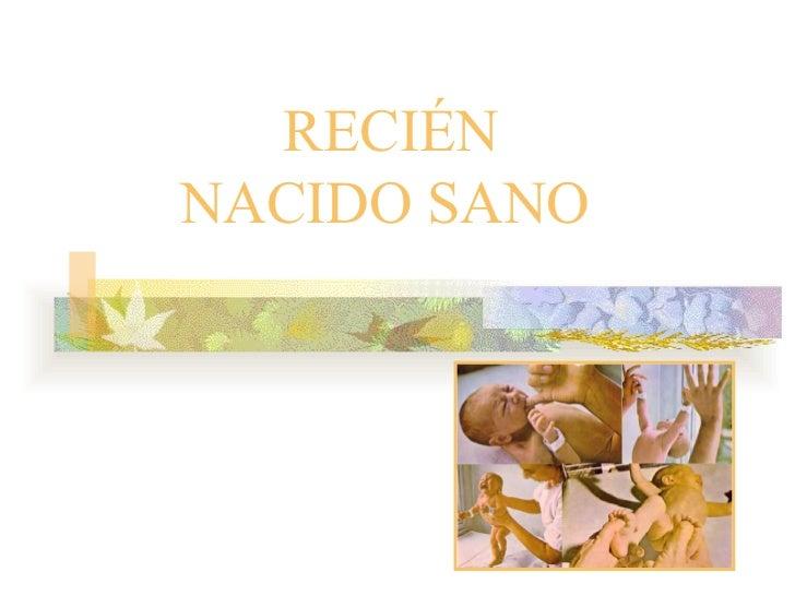 RECIÉN NACIDO SANO