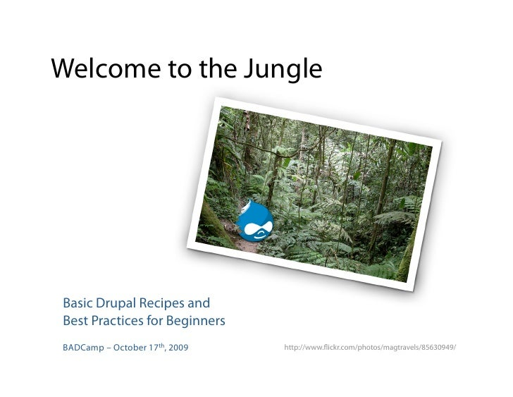 Welcome to the Jungle     Basic Drupal Recipes and Best Practices for Beginners BADCamp – October 17th, 2009   http://www....