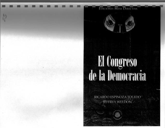 Reclutamiento y liderazgo politico prd. congreso de la demcracia. navarrete. 2010