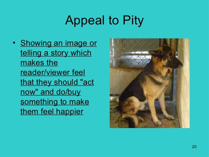 appeal to pity An appeal to pity (also called argumentum ad misericordiam or the galileo argument) is a fallacy in which someone tries to win support for an argument or idea by exploiting his or her.