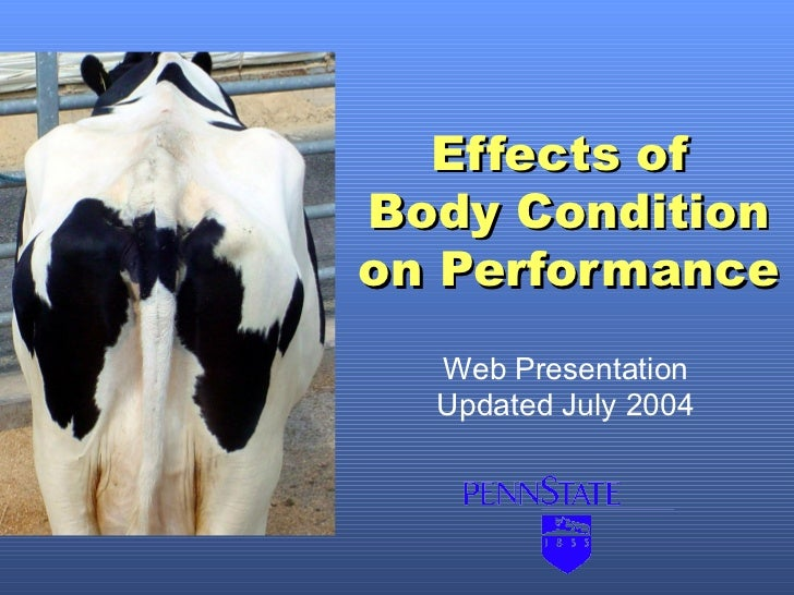 Effects ofBody Conditionon Performance  Web Presentation  Updated July 2004