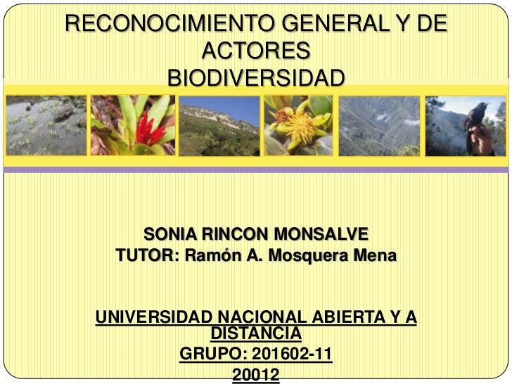 RECONOCIMIENTO GENERAL Y DE         ACTORES      BIODIVERSIDAD      SONIA RINCON MONSALVE   TUTOR: Ramón A. Mosquera Mena ...