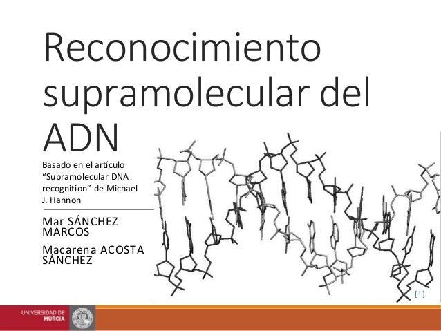 """Reconocimiento  supramolecular del  ADN  Basado en el artículo  """"Supramolecular DNA  recognition"""" de Michael  J. Hannon  M..."""