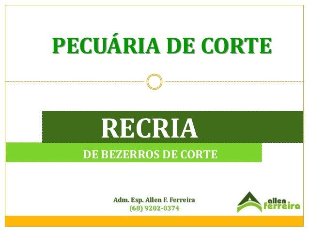 PECUÁRIA DE CORTE  RECRIA DE BEZERROS DE CORTE  Adm. Esp. Allen F. Ferreira (68) 9202-0374