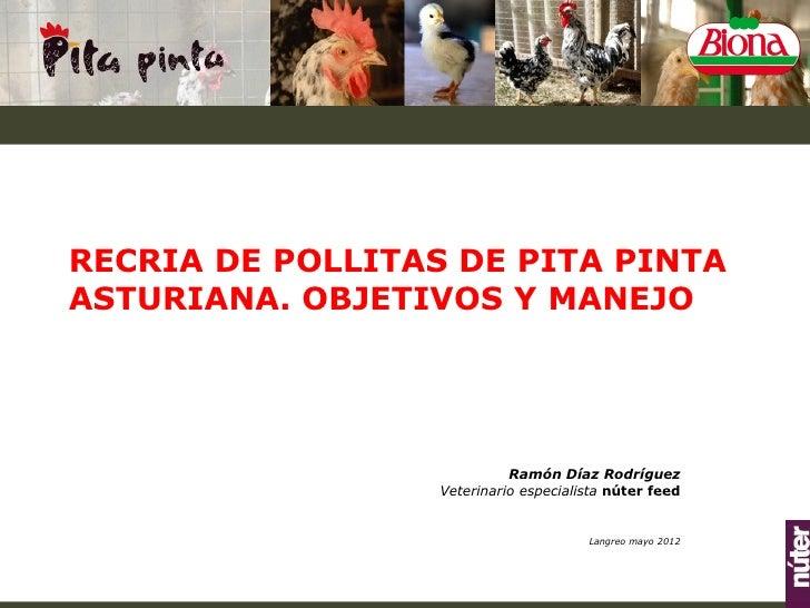 RECRIA DE POLLITAS DE PITA PINTAASTURIANA. OBJETIVOS Y MANEJO                            Ramón Díaz Rodríguez             ...