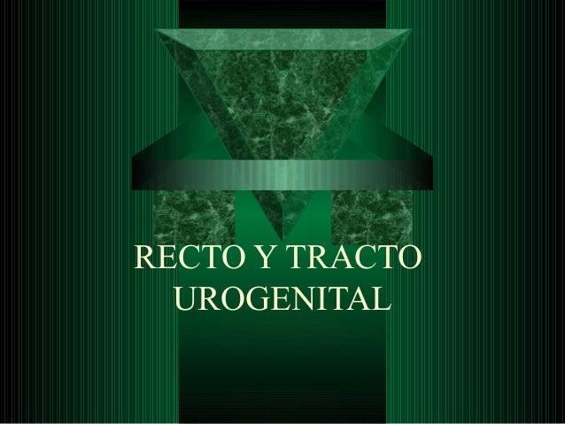 RECTO Y TRACTO UROGENITAL