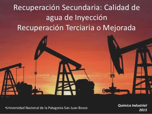Recuperación Secundaria: Calidad de agua de Inyección Recuperación Terciaria o Mejorada •Universidad Nacional de la Patago...