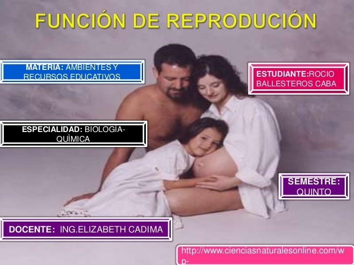 FUNCIÓN DE REPRODUCIÓN<br />MATERIA: AMBIENTES Y RECURSOS EDUCATIVOS<br />ESTUDIANTE:ROCIO BALLESTEROS CABA<br />ESPECIALI...