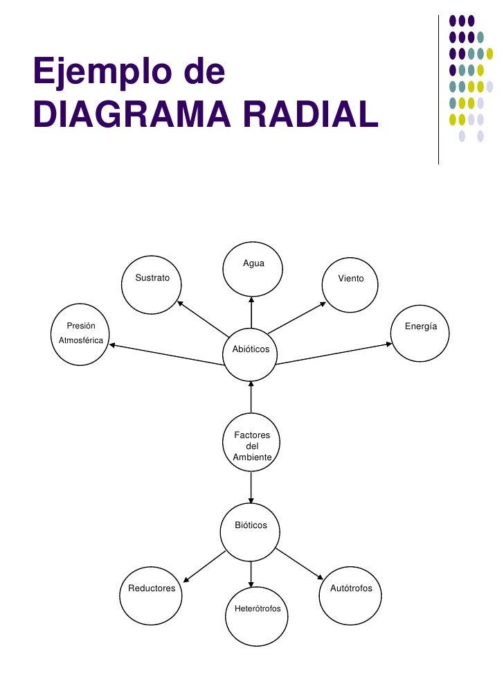 Resultado de imagen de imagenes de esquema radial