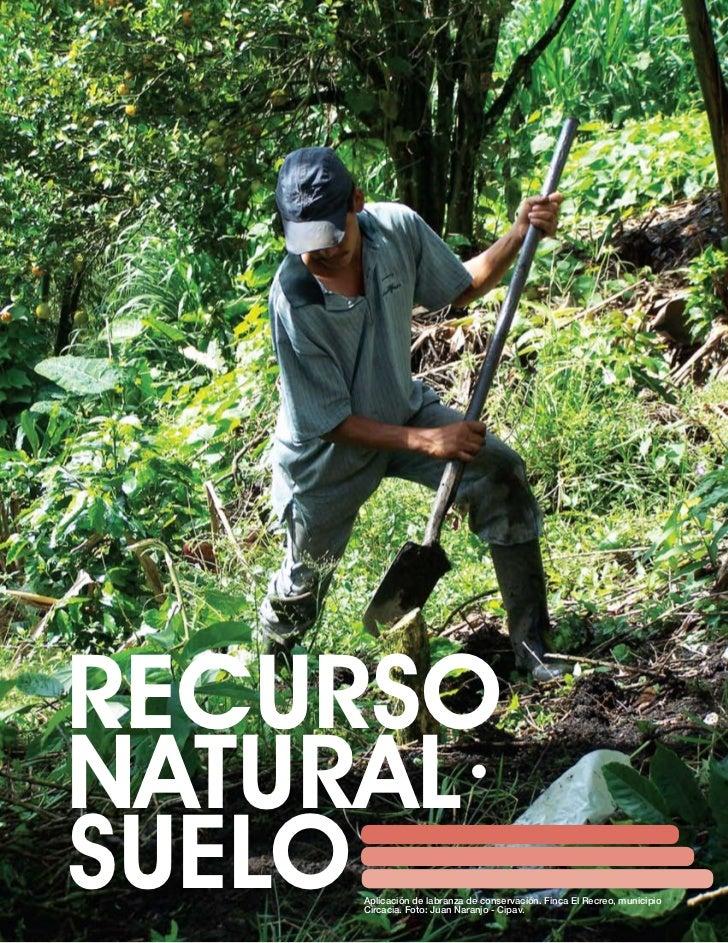 Recurso natural suelo ganaderia for Recurso clausula suelo
