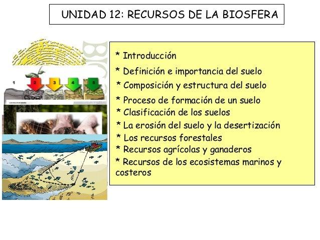 UNIDAD 12: RECURSOS DE LA BIOSFERA        * Introducción        * Definición e importancia del suelo        * Composición ...