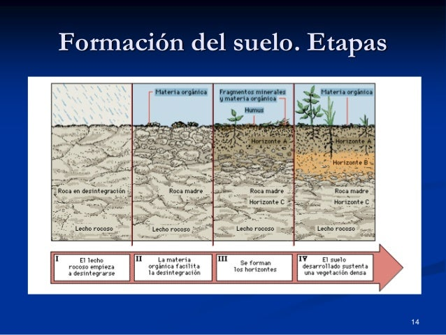 recursos de la biosfera y el suelo