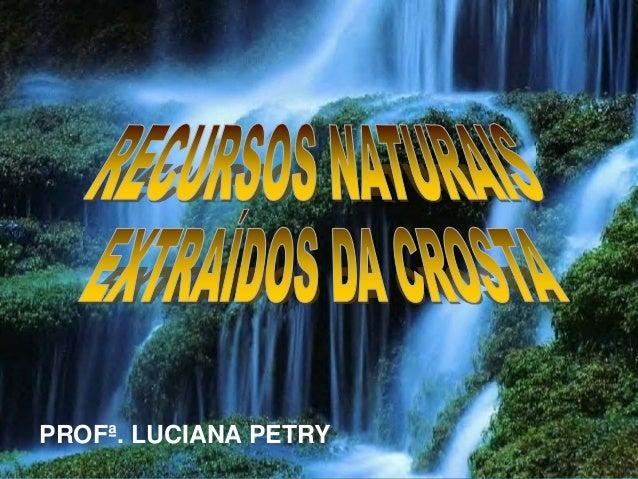 PROFª. LUCIANA PETRY