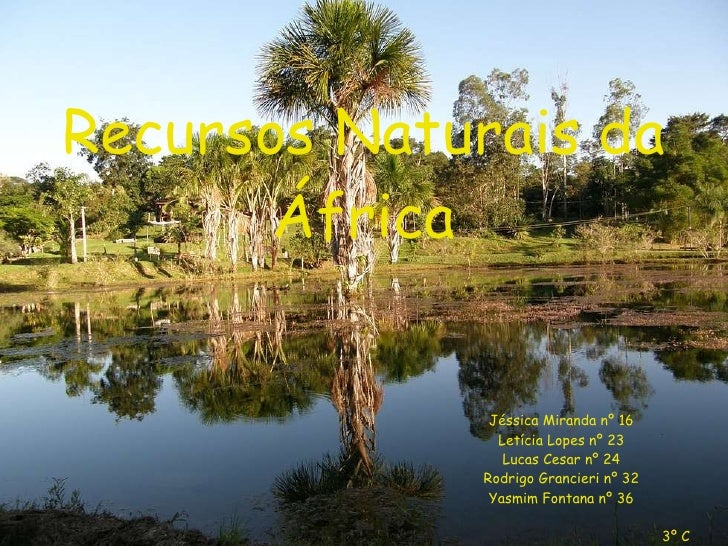 Recursos Naturais da África Jéssica Miranda nº 16 Letícia Lopes nº 23 Lucas Cesar nº 24 Rodrigo Grancieri nº 32 Yasmim Fon...