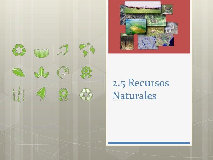 2.5 RecursosNaturales