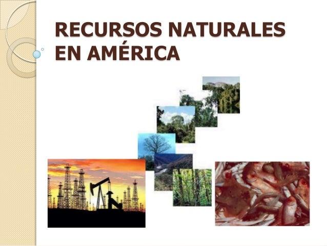 Recursos naturalesr for Imagenes de productos americanos