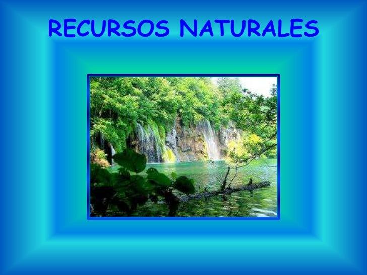 Recursos naturales rosario, catalina 205