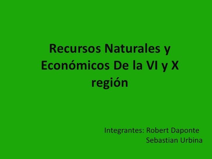 Recursos naturales y económicos de la vi y x región