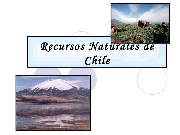 Recursos Naturales Y Sectores EconóMicos