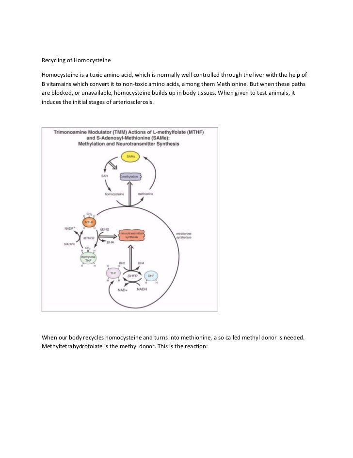 Recycling of homocysteine
