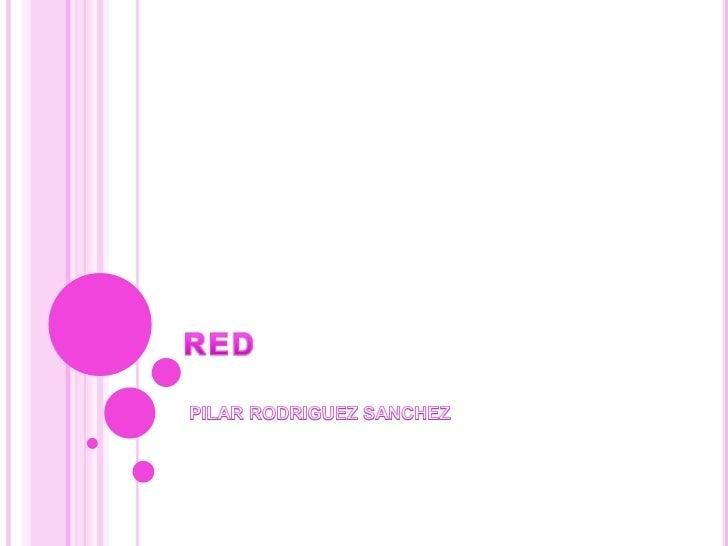 RED<br />PILAR RODRIGUEZ SANCHEZ<br />