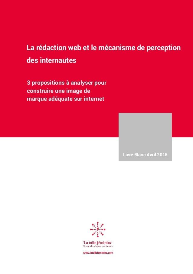 La rédaction web et le mécanisme de perception des internautes 3 propositions à analyser pour construire une image de marq...