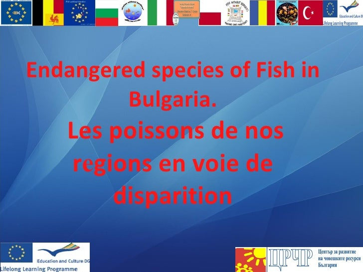 Endangered species of Fish in Bulgaria .   Les poissons de nos r e gions en voie de disparition