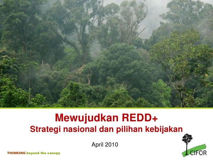Mewujudkan REDD+Strategi nasional dan pilihan kebijakan<br />April 2010<br />