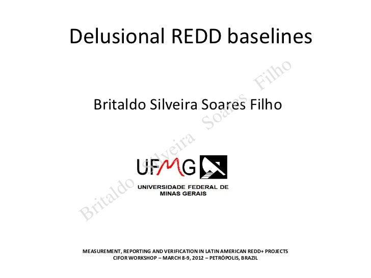 Delusional REDD baselines                                                                  il ho                          ...
