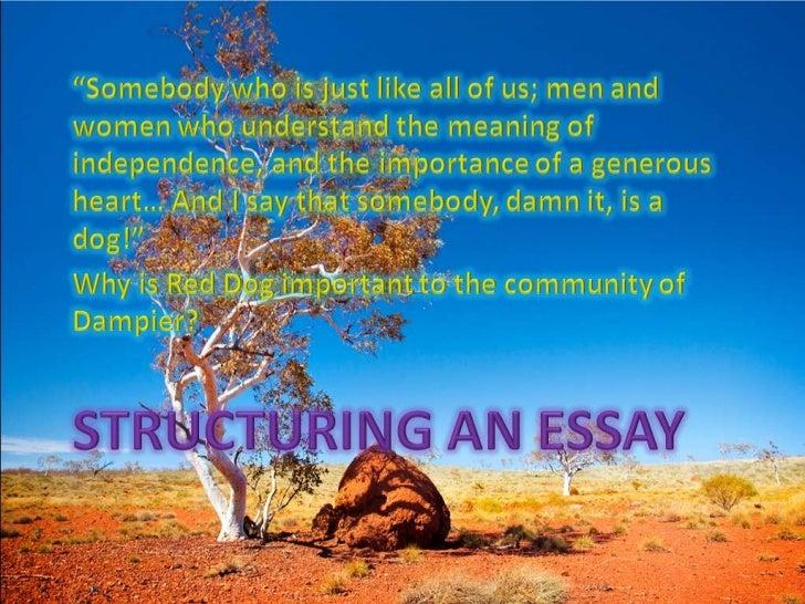 sin structure essay