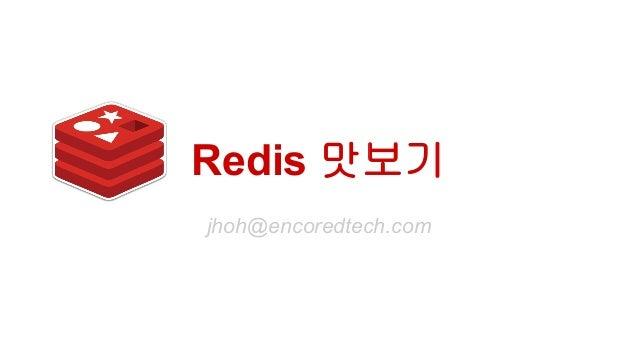 Redis 맛보기