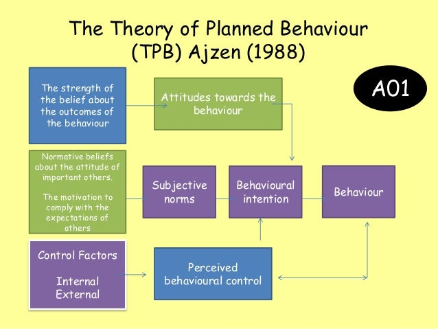 Personality theory essay