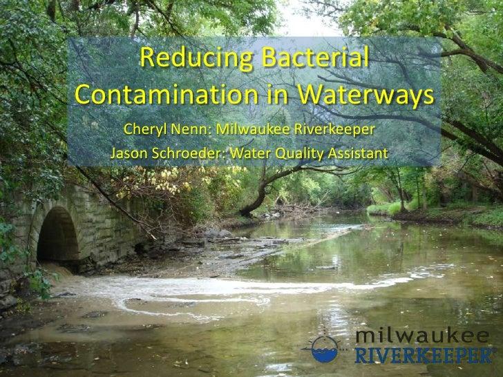 Reducing Bacterial Contamination In Waterways