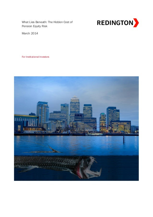 Red views   what lies beneath - the hidden cost of pension equity risk - march 2014