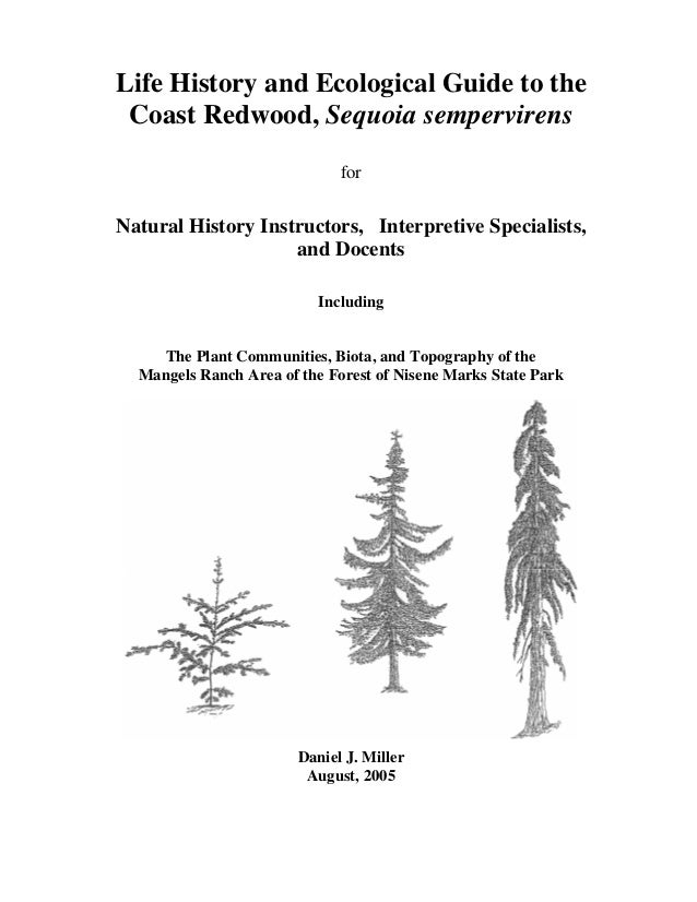 Life History and Ecological Guide to the Coast Redwood, Sequoia sempervirens for Natural History Instructors, Interpretive...