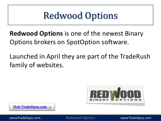 Binary options demo account traderush