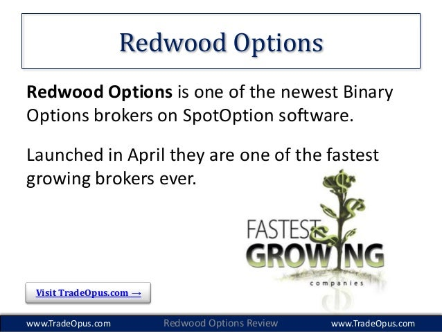 Online options brokers review