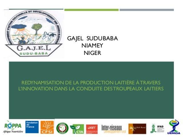 GAJEL SUDUBABA NIAMEY NIGER REDYNAMISATION DE LA PRODUCTION LAITIÈRE À TRAVERS L'INNOVATION DANS LA CONDUITE DESTROUPEAUX ...