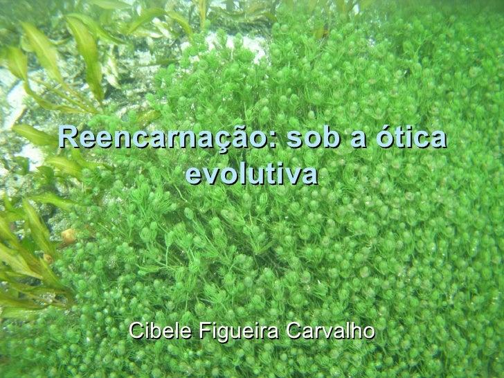 Reencarnação sob a ótica da evolução