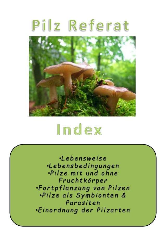 •Lebensweise •Lebensbeding u ng en •Pi l z e m i t u nd o hne Frucht körper •Fortpflanzung von Pilzen •Pilze als Symbiont ...