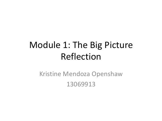 Module 1: The Big Picture Reflection Kristine Mendoza Openshaw 13069913