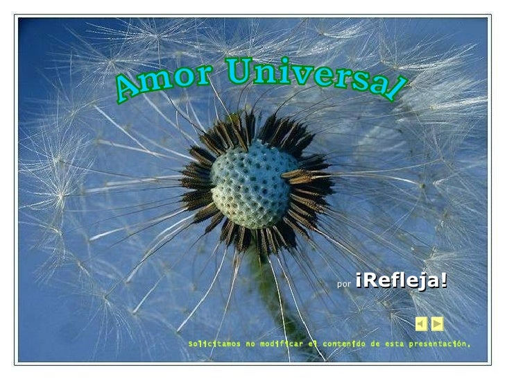 Refleja.amor universal