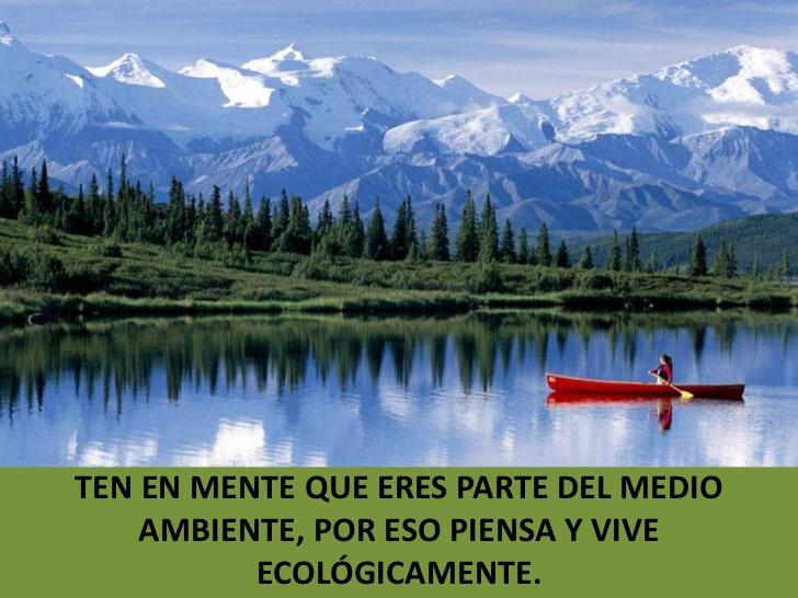 reflexiones-ecologicas-grado- ...