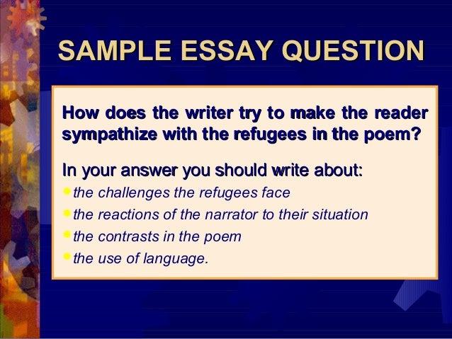 example essay questions