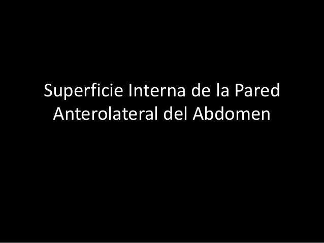 Superficie Interna de la Pared Anterolateral del Abdomen