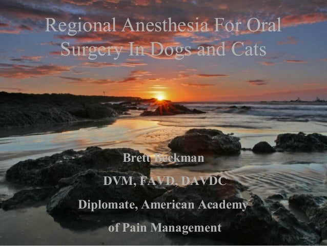 Regional Anesthesia For Oral Surgery In Dogs and Cats Brett Beckman DVM, FAVD, DAVDC Diplomate, American Academy of Pain M...
